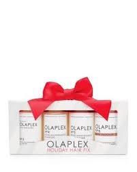 Olaplex Holiday Kit